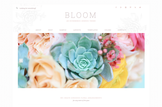 bloom-cm-537x357