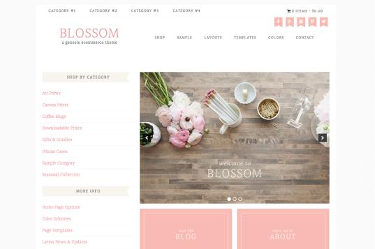 blossom-cm-537x357